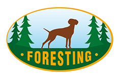 Foresting Italia